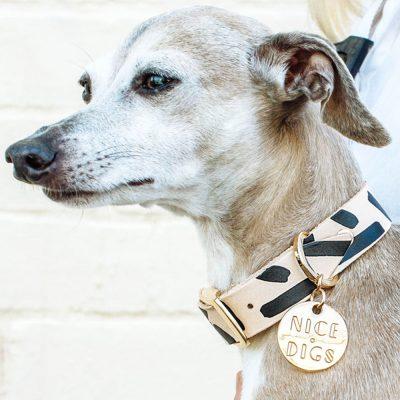 NICEDIGS // Tiggy Black Leather Dog Collar