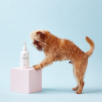dog with MrPaw Natural Dog Conditioning Shampoo