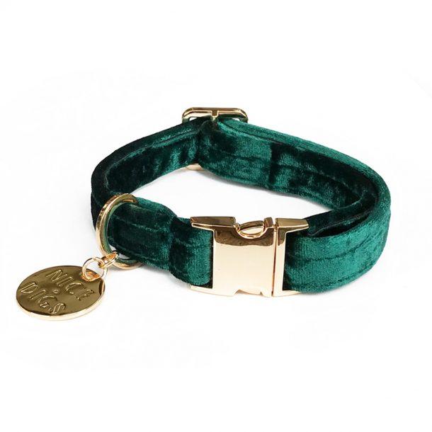 Jade Plush Velvet Dog Collar front view