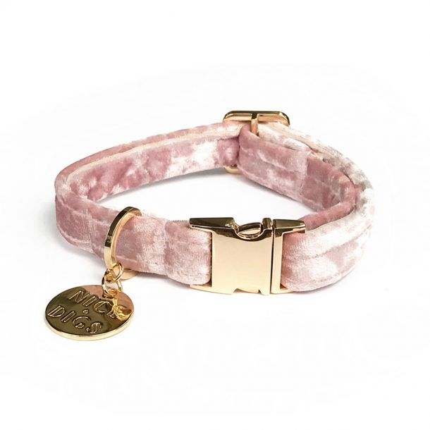 Rose Plush Velvet Dog Collar with nice digs charm