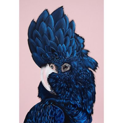 "HEYLIE MORRIS // ""Alva"" The Black Cockatoo"
