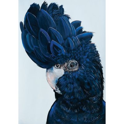 "HEYLIE MORRIS // ""Winston"" The Red Tailed Black Cockatoo"