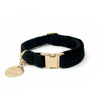 NICEDIGS // Noir Plush Velvet Dog Collar