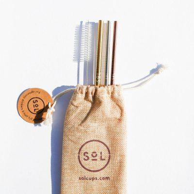 Sol reusable straws