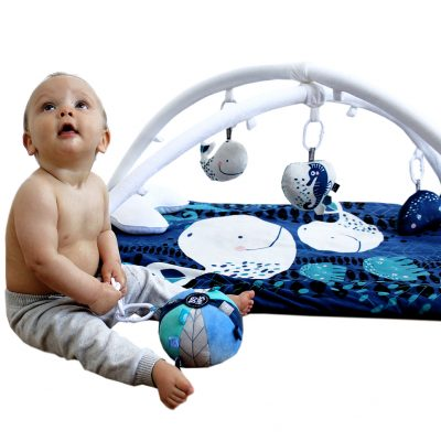 OBDesigns Whale Of A Time Activity Play Set